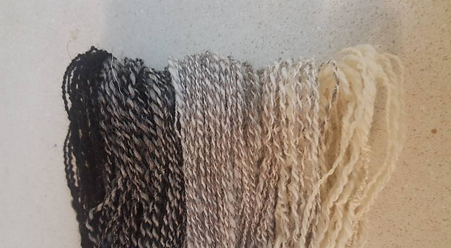 Ravelry User VAmom created a beautiful 2-ply natural Ombre Yarn with this months selections.